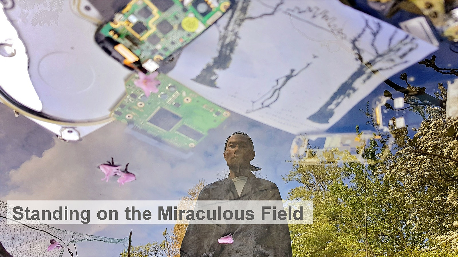 Standing on the Miraculous Field